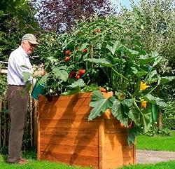 Obst und Gemüse _ klein
