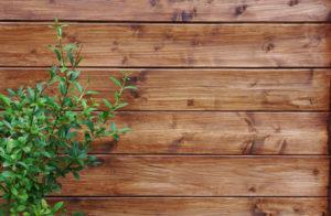 Hochbeet Holz pflegen